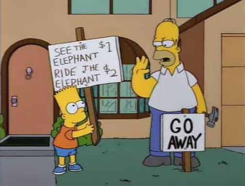 Bart's elephant rides